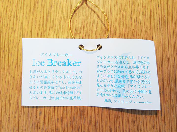 icebreakerとは?